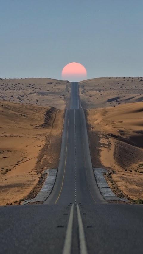 Con Đường Trên Sa Mạc