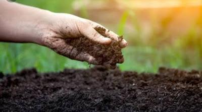 Poem on Importance of soil, Poem on Soil, Poem on mitti