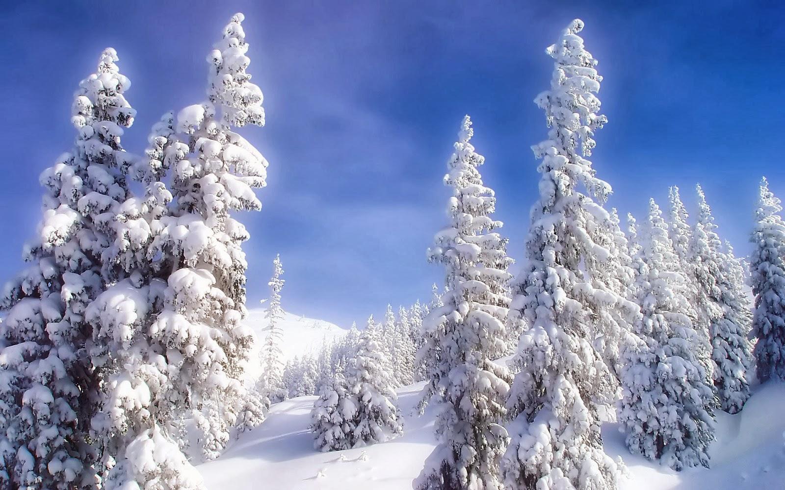 Missing Beats Of Life: Winter Season HD Wallpaper