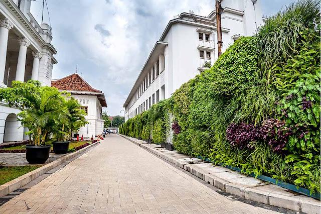 Museum BI Kota Tua Jakarta Green Wall