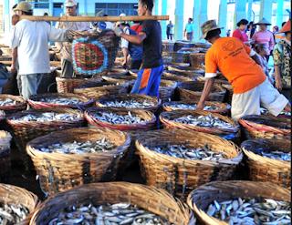 ILLEGAL FISHING MUSUH UTAMA PERIKANAN