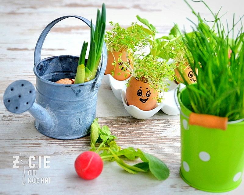 życie Od Kuchni Wiosna W Domu