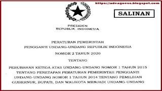 Peraturan Pemerintah Pengganti Undang-Undang (PERPPU) Nomor 2 Tahun 2020 tentang Pemilihan Gubernur Bupati dan Walikota