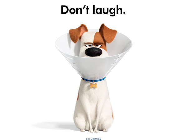The Secret Life of Pets 2 – In Theaters June 7
