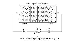 Forward-biased p–n junction diagram