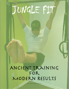 Ancient Training For Modern Results Ebook