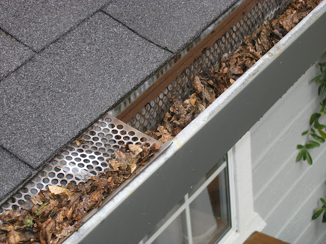 Gutter Cleaning: 6 Convincing Reasons to Hire a Professional