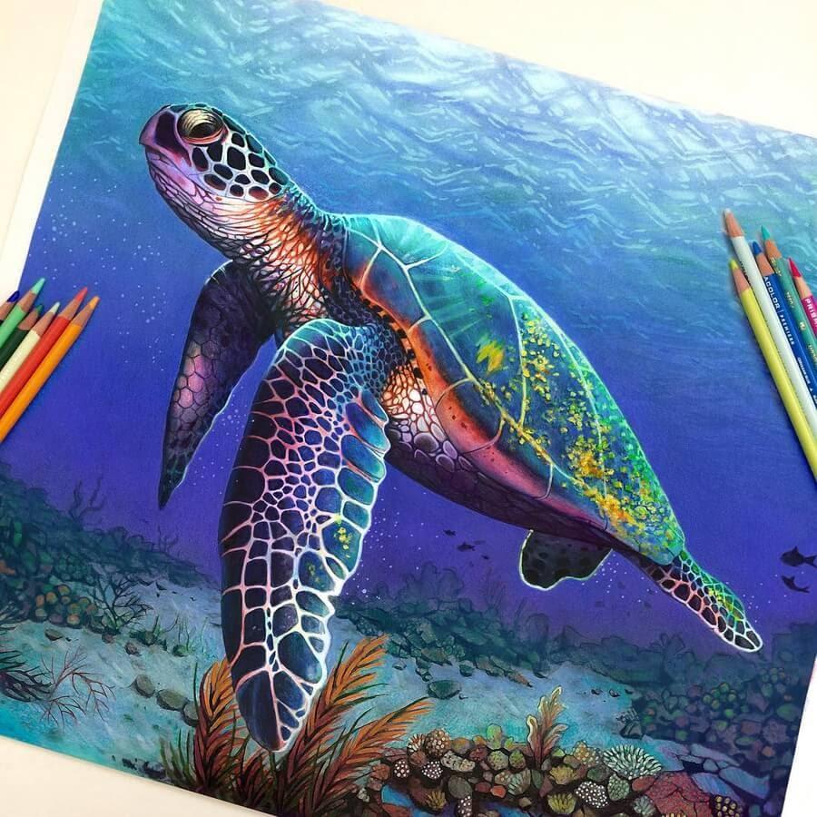 06-Sea-Turtle-Animal-Drawings-www-designstack-co