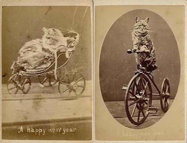 te-zdjęcia-mają-140-lat