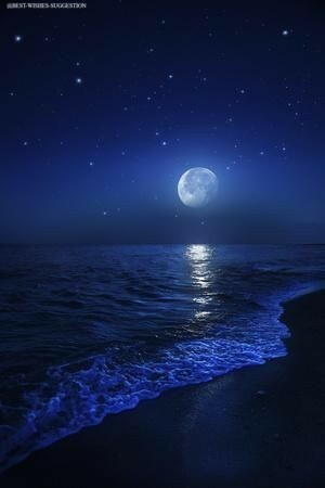 good-night-sea-image