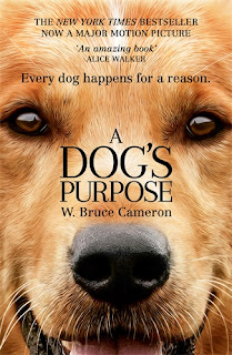 Film A Dog's Purpose (2017)