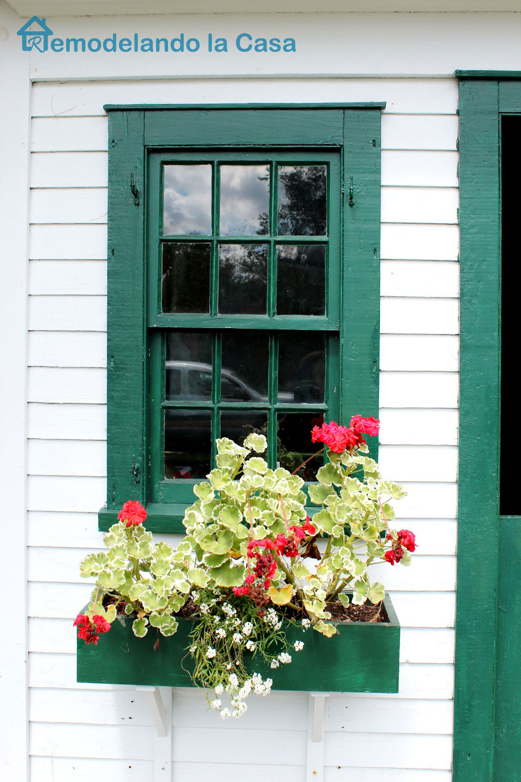 green flower window box