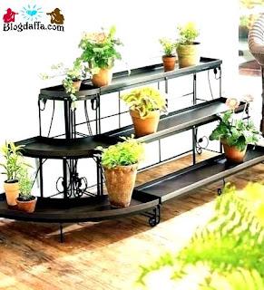 Cukupi asupan Kebutuhan sinar matahari tanaman hias dalam ruangan