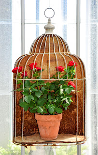 http://valonvuosi.blogspot.com/p/puutarha-maaseutu-ja-luontokuvaus.html