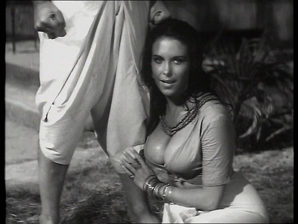 Anita queen and lilian tiger pov - 2 part 3