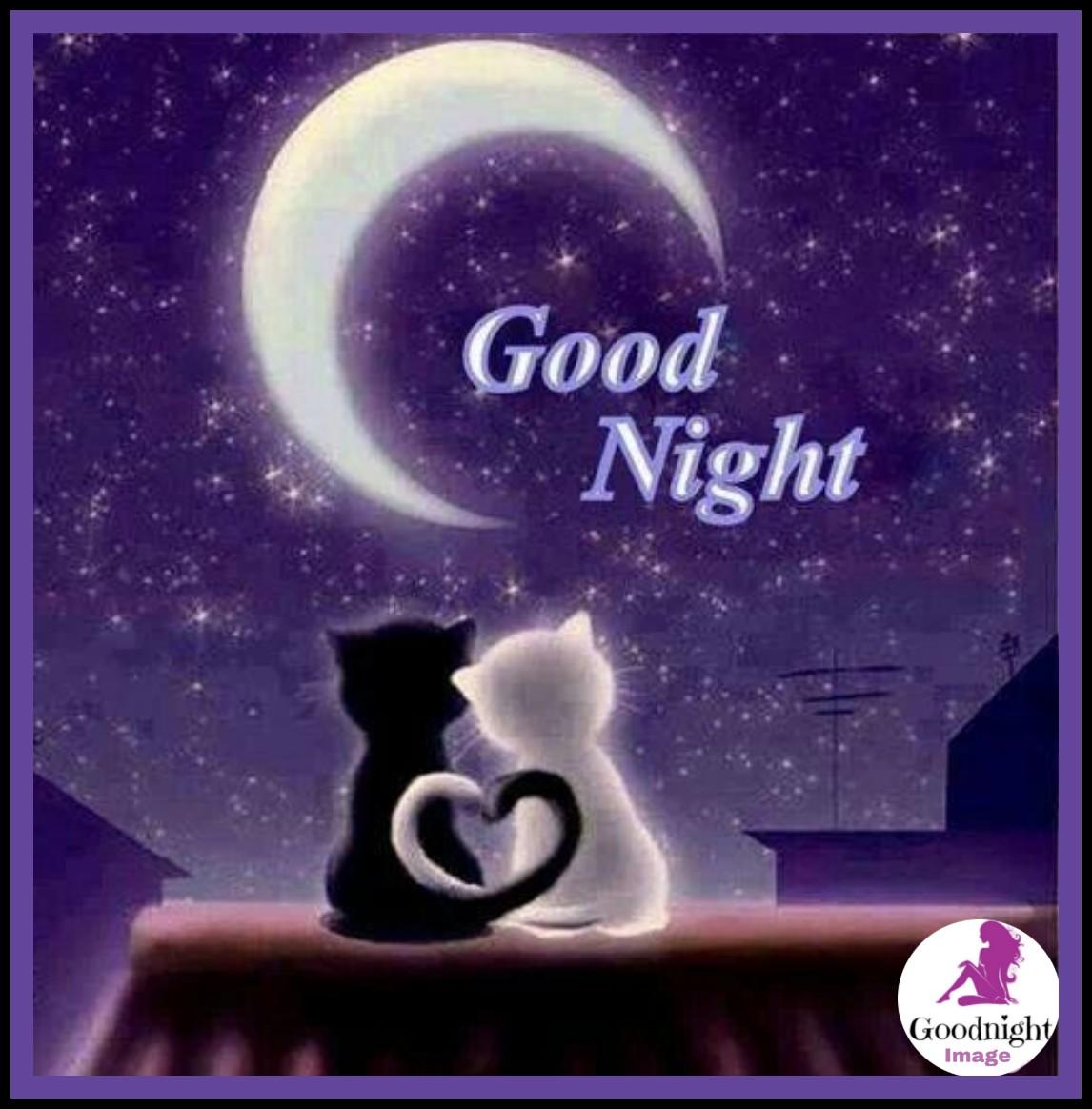 Good Night%2BImage 28