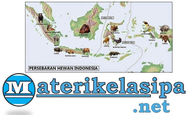Persebaran Flora dan Fauna di Indonesia Beserta Contohnya