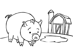 Baby Pig Animal Coloring Pages Online For Kids