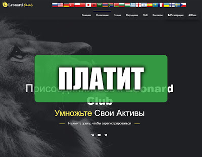 Скриншоты выплат с хайпа leonard.pro