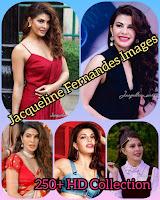 https://www.galpaherry.com/2021/06/jacqueline-fernandes-hot-images-250-hd.html