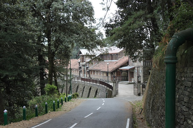 Shimla's Food and Local Places To Visit in Shimla