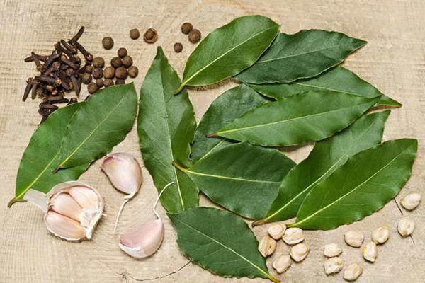 5 Benefits of Bay Leaves for Women