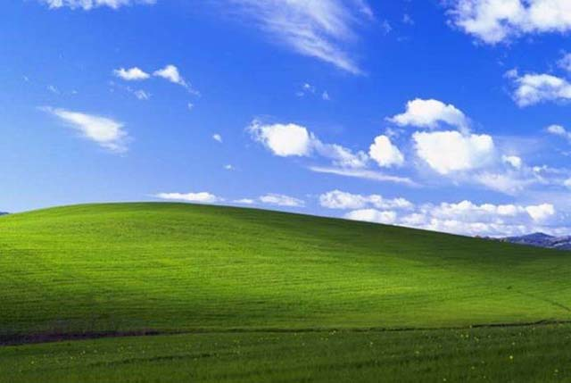 Statistik Terbaru Menunjukkan Peningkatan Pangsa Pasar Windows XP