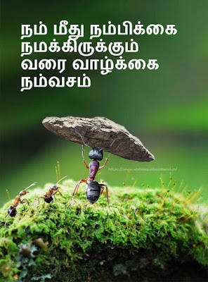 Positive Quotes In Tamil