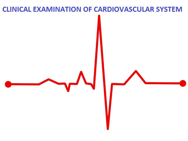 cvs-examination