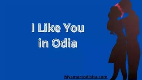 I Like You in Oriya Language, Oriya translation i like you