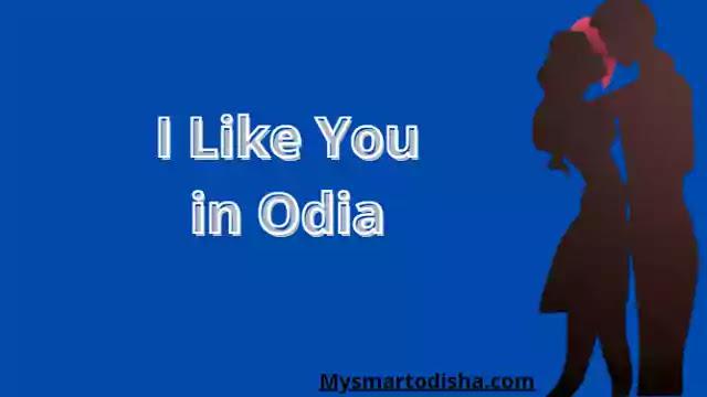 I Like You in Oriya Language