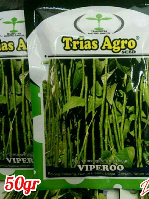 Benih Kacang panjang VIPEROO Trias Agro Seed