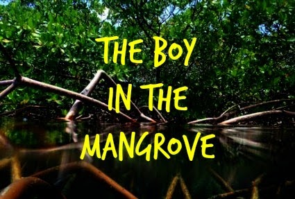 The Boy in the Mangrove