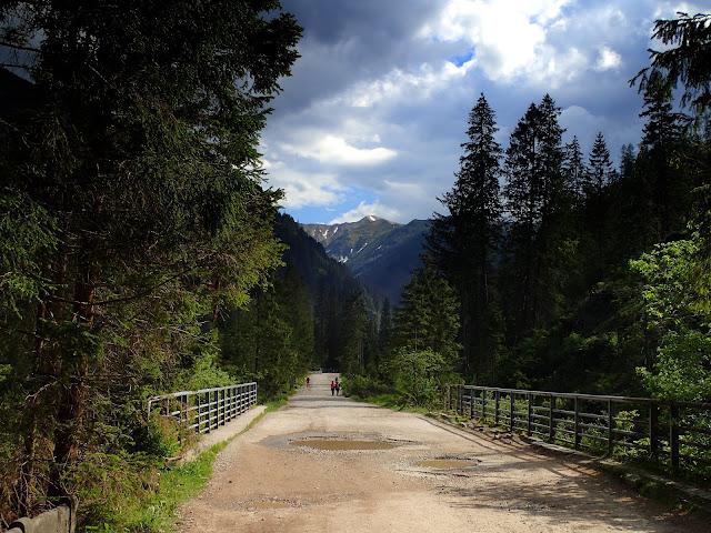Dolina Chochołowska, gdzieś między Huciskami a schroniskiem
