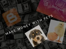 HOW TO MAKE MONEY WITH PETS ?