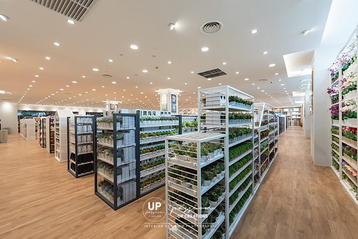 Kaison ekocheras in grey, white color racking and wood vinyl flooring