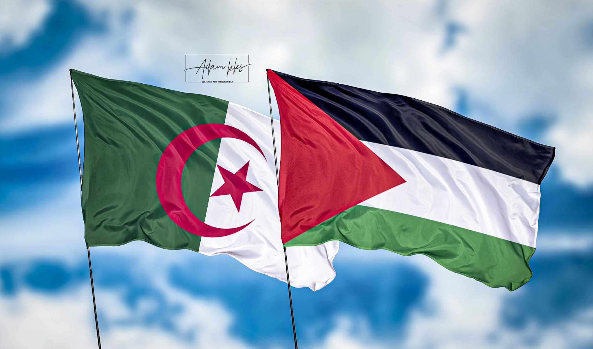 خلفيات الجزائر وفلسطين اجمل خلفيات اعلام الجزائر وفلسطين ترفرف في السماء