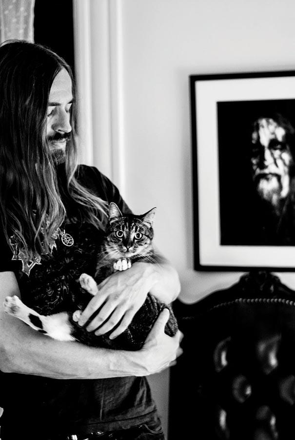 sevasblog things i like alexandra crockett s metal cats. Black Bedroom Furniture Sets. Home Design Ideas
