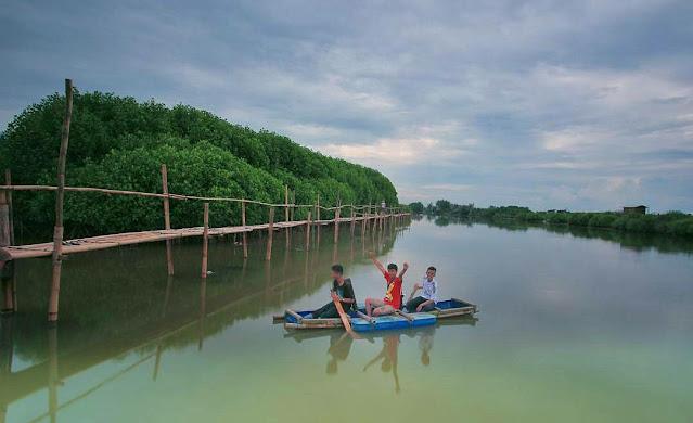 Wisata Pantai Congot Kulon Progo, Spot Terbaik Menikmati Hutan Mangrove