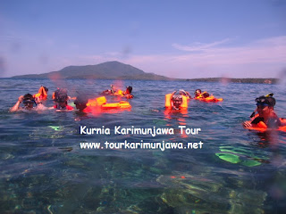 pulau gosong cemara karimunjawa