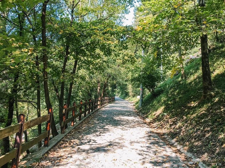 mulattiera per il sentiero spirito del bosco