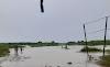 उत्तर बिहार में बाढ़ ने लिया विकराल रूप, कई गाँव हुई खाली, एनएच पे शरण लेने को मजबूर हुए लोग
