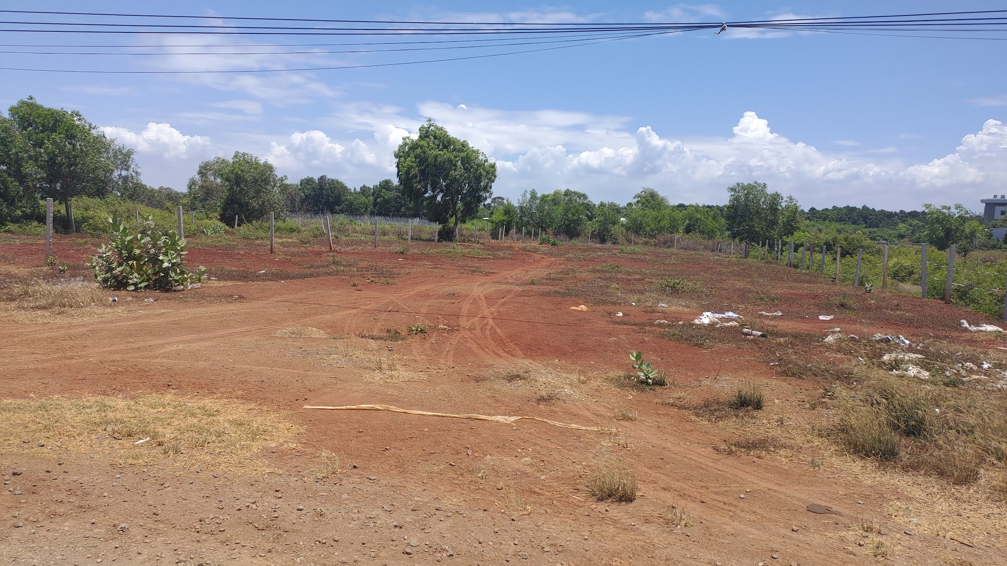 cần bán 3047m2 đất Hồ Tràm Mặt tiền đường ODA cách tiểu học hồ tràm chỉ vài bước chân