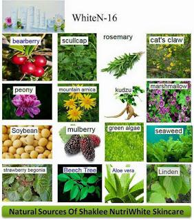 bahan-bahan dalam nutriwhite