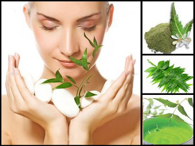 Bitter boon Neem has many skin benefits. Let's check Neem Beauty benefits in treatment of Infections, Pores, Acne & Hair Troubles using as leaves, powder and oil.