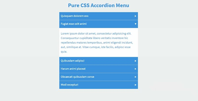 How To Create An FAQ Accordion Menu Using Only HTML & CSS