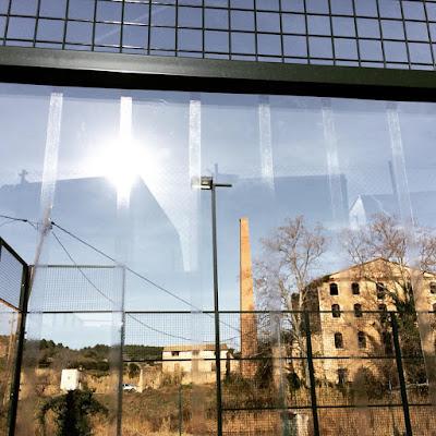 Tires adhesives per a vidres per evitar l'impacte dels ocells