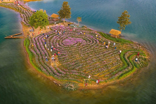 Kon Trang Long Loi - Đảo hoa hấp dẫn ở Kon Tum
