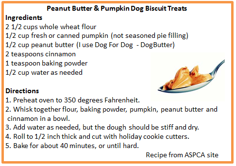 Peanut Butter & Pumpkin Dog Biscuit Treats Recipe