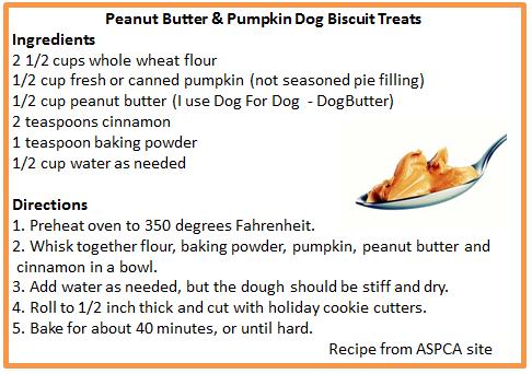 Peanut Butter & Pumpkin Dog Biscuit Treats Recipe